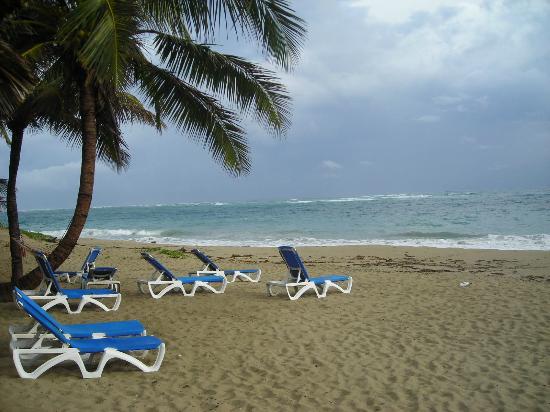 Extreme Hotel: beach