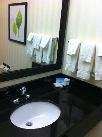 Fairfield Inn & Suites Harrisburg West: Vanity in the bathroom
