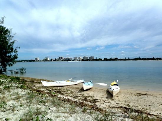 Blue Water Kayak Tours