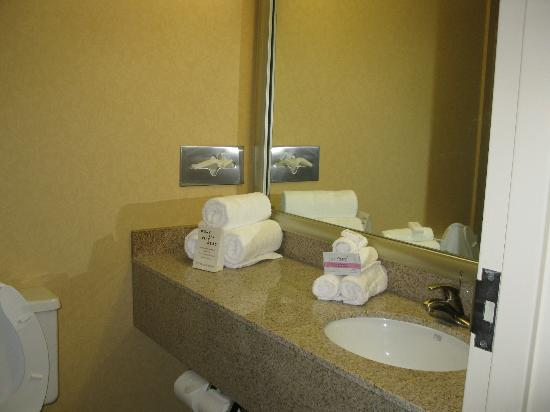 Holiday Inn Greenville : sink area