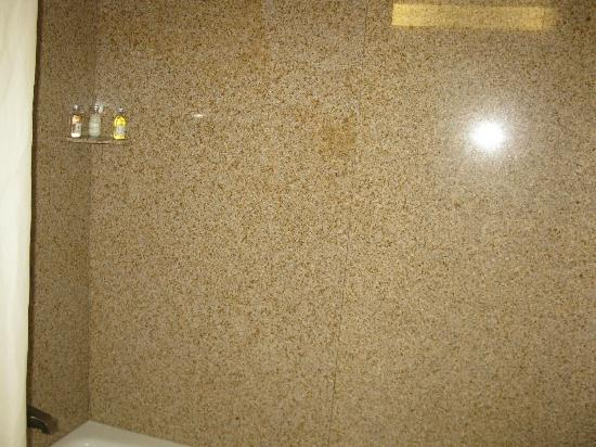 Holiday Inn Greenville: shower