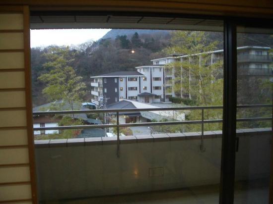 Merveille Hakone Gora: 部屋からの眺め