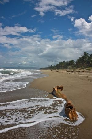 Hotel Celuisma Cabarete: Walking for miles