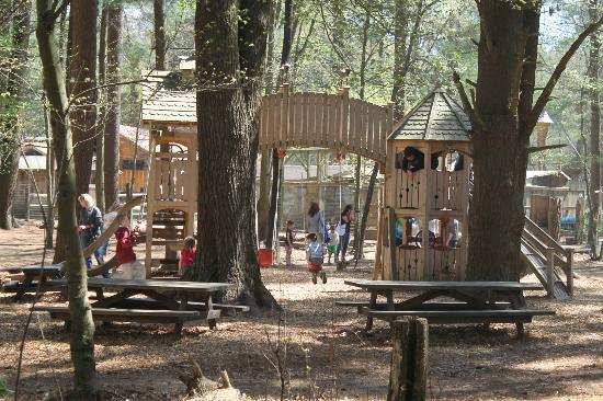 Winslow Farm Animal Sanctuary: Playground & many animals surrounding it