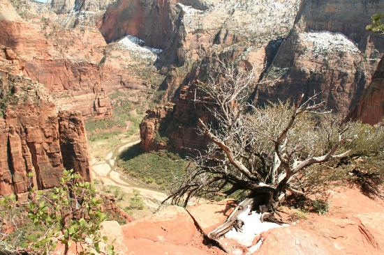 Courtyard by Marriott St. George: Scout's Landing at Zion National Park