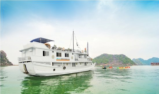 Alova Gold Cruises Day Tours