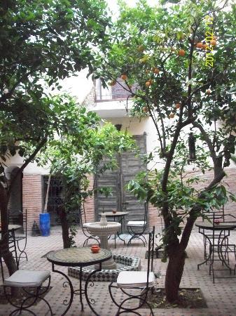 Riad Adraoui: Lindo patio