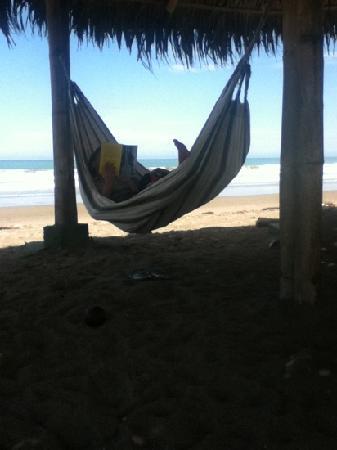 Viejamar Hostel: Las hamacas al lado de la playa.Qué relajo.