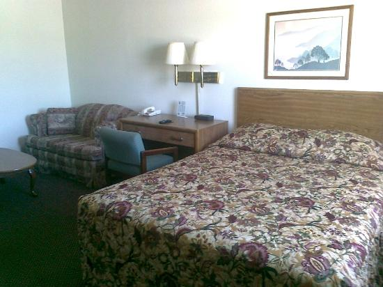 Super 8 Johnson City: Standard single queen room