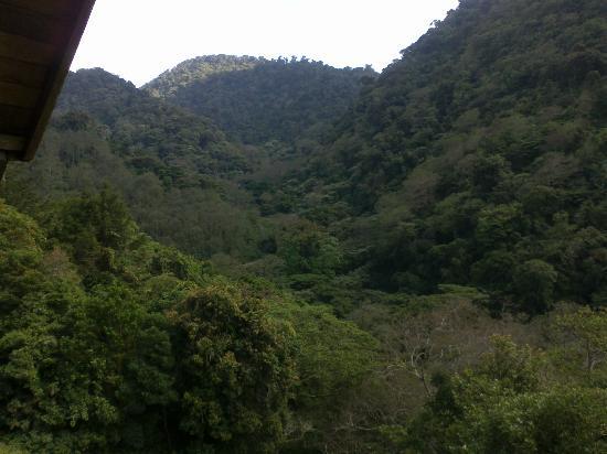 Albergue Ecologico Monterreal: Vista de la montaña