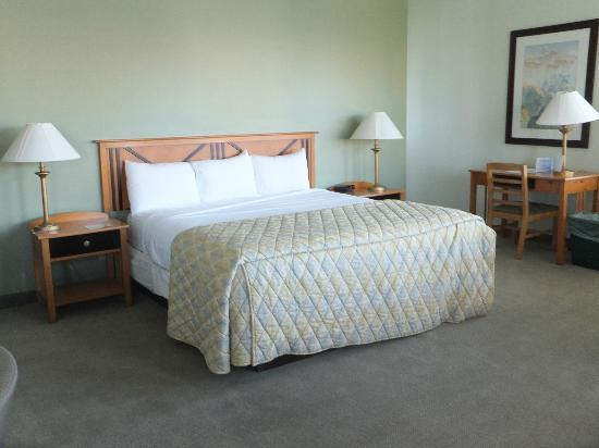 Super comfortable bed at Crockett Hotel