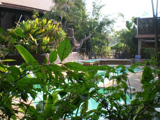 Club One Seven Chiang Mai : The Pool with it's gardens