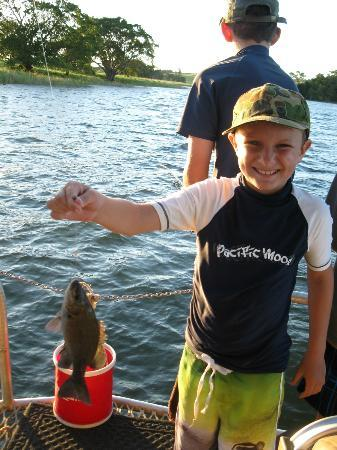 Lake Tinaroo Cruises: Another fish