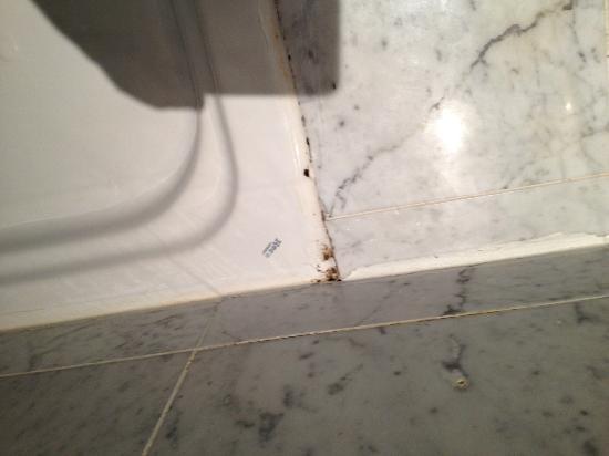 Hotel  Le Cavendish: La muffa nei bagni