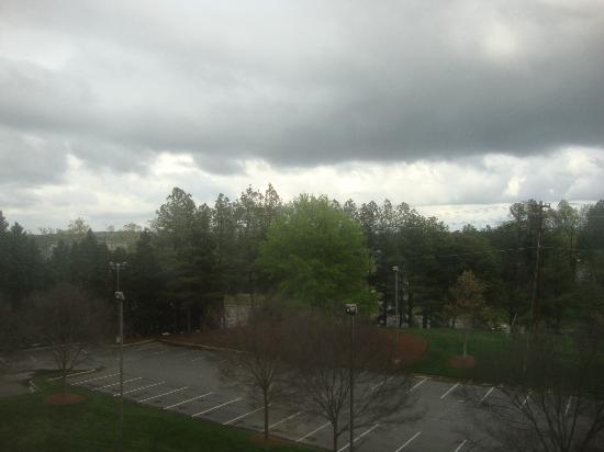 Hilton Garden Inn Raleigh-Durham/Research Triangle Park: View from Room