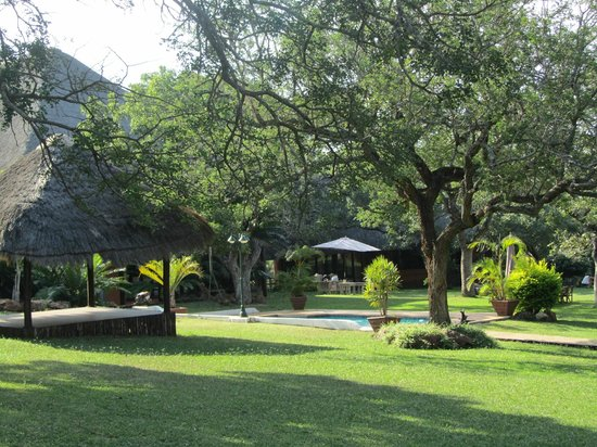 Zebra Hills Safari Lodge: Zebra Hills Gardens and Pool