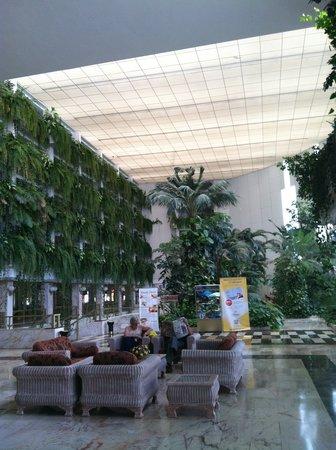 Spring Hotel Vulcano : Hotel Lobby