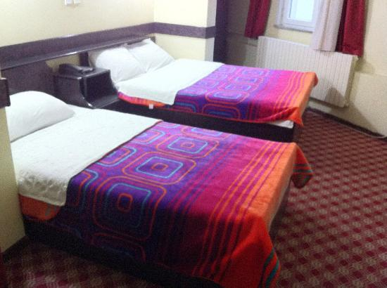 Hotel Silviya: Standard room