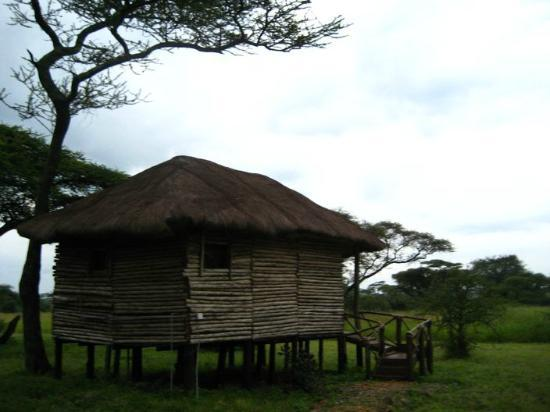 Ikoma Safari Camp: Our Cottage