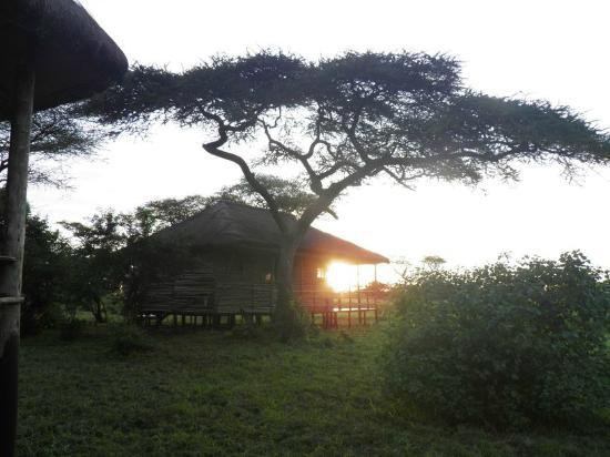 Ikoma Safari Camp: Sunset