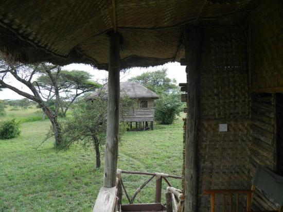 Ikoma Safari Camp: View from the Room
