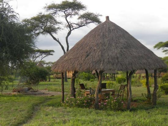 Ikoma Safari Camp: Breakfast Area
