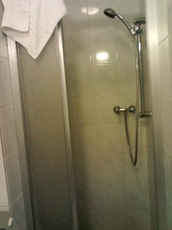 Hotel De Looier: shower