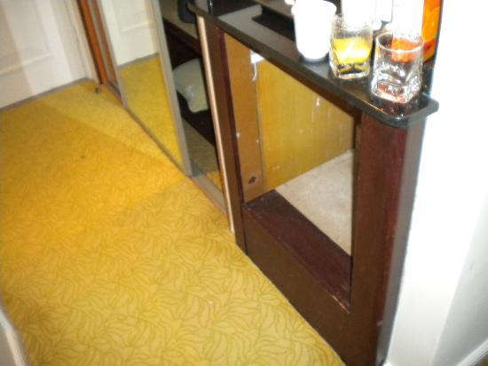 Tudor Park Marriott Hotel & Country Club: fridge void
