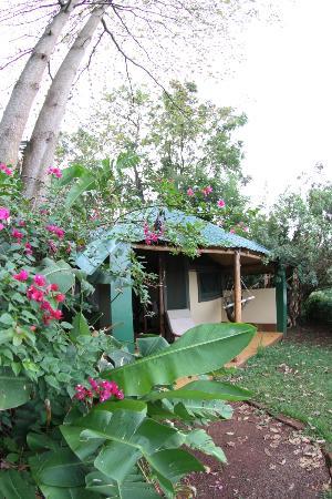 The Nile Porch: Garden of Eden