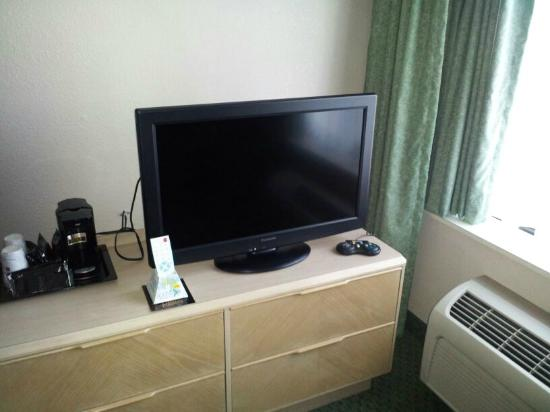 Wyndham Garden Jacksonville: flat panel in room