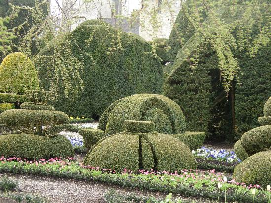 Levens Hall: Levens topiary