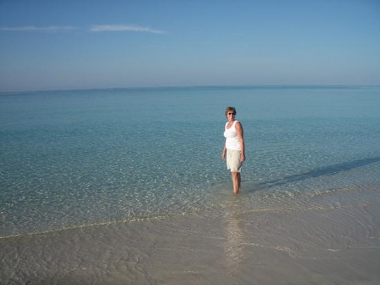 Pigeon Cay Beach Club: My wife on our first morning