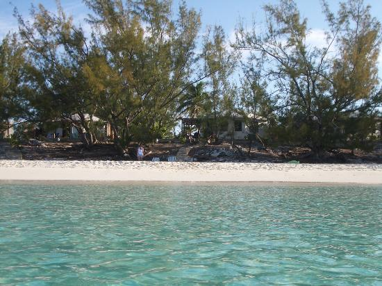 Pigeon Cay Beach Club: The beach at Pigeon Cay
