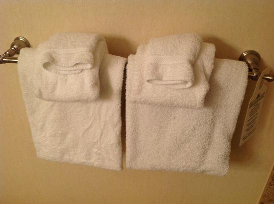 The Genesee Grande Hotel: Towels