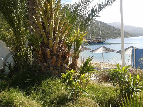 Hapimag Resort Sea Garden: Bozulmamış doğallık