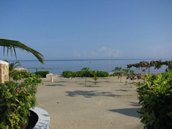 Jerk Chicken - Photo de Grand Bahia Principe Jamaica, Runaway Bay ...