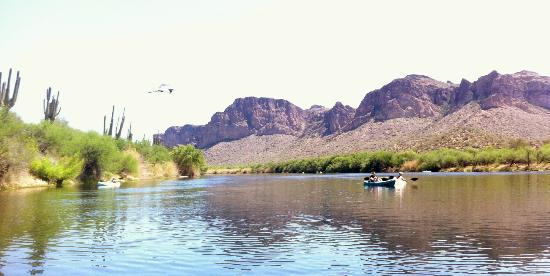 Saguaro Lake Guest Ranch: A heron flies over my lovely wife.