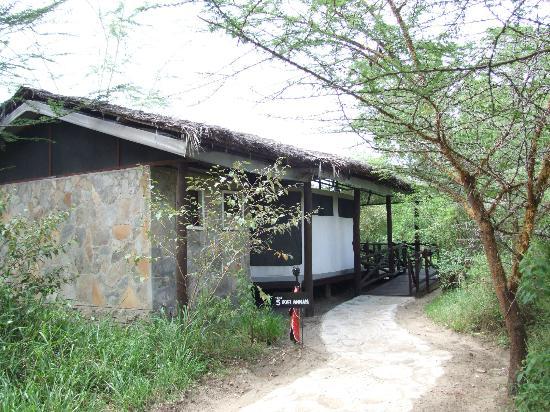 Tipilikwani Mara Camp - Masai Mara: Tipilikwani luxury tent