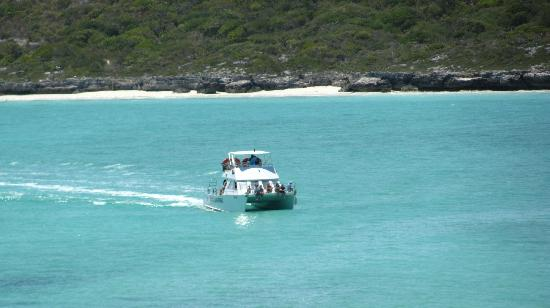 Harbour Club Villas & Marina: Dive Boat