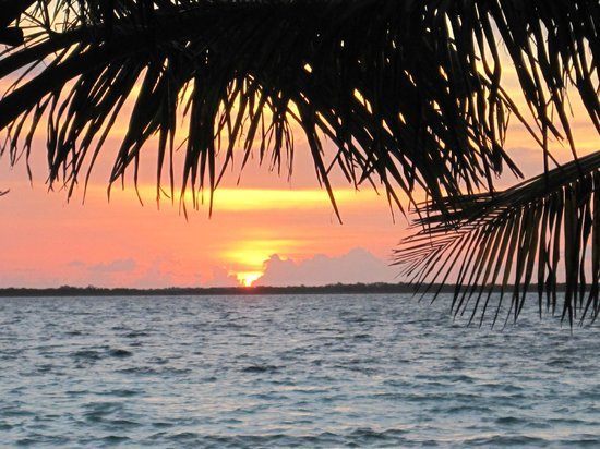 Coco Plum Cay, Belize : Morning Coffee walk with sunrise