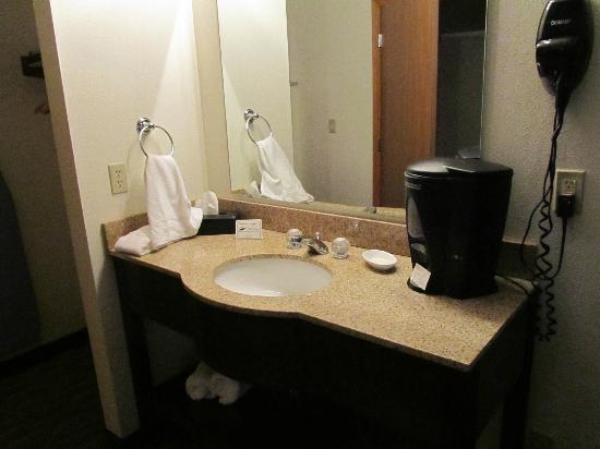 Settle Inn & Suites Harlan: Sink