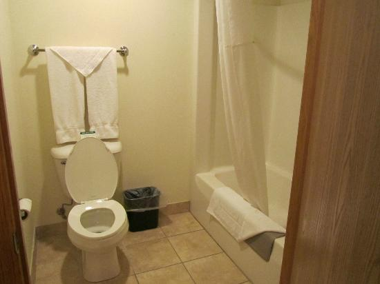 Settle Inn & Suites Harlan : Bathroom