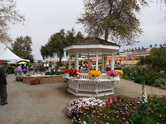 Carlsbad Flower Fields: places to just sit and relax