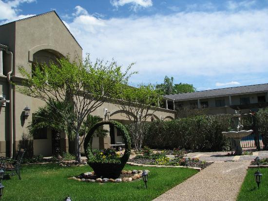 Vineyard Court Designer Suites Hotel: Courtyard View