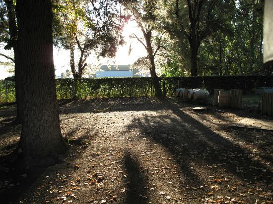Finca La Celia Winery: Gorgeous grounds; bring a picnic