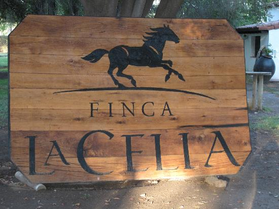 Finca La Celia Winery: Charm is everywhere