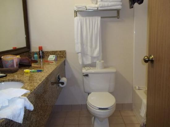 Expressway Suites: room, average-sized bathroom