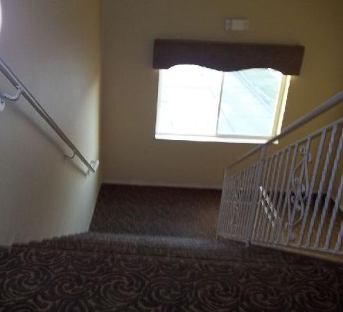 Expressway Suites: carpeted stairs