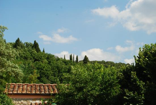 Agriturismo Verde Oliva : view from entrance of large barn