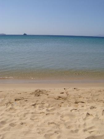 Aithra Apartments & Maisonettes: beach across the hotel